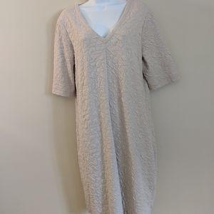 Sandwich_ Sleeve Dress